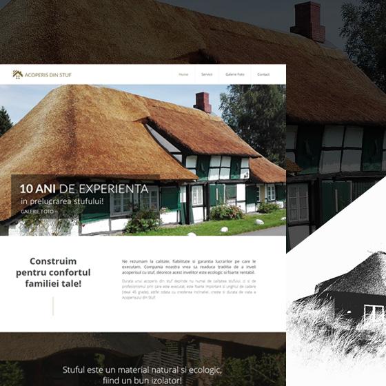 design web acoperis stuf site prezentare acoperis din stuf agentie publicitate 21vision oradea
