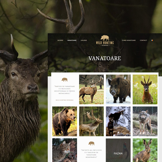 design web agentie vanatoare site prezentare wild hunting agentie web 21vision oradea