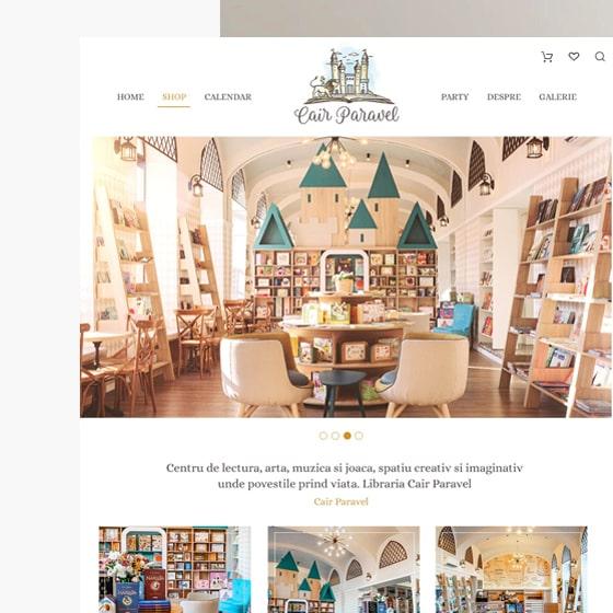 design web creare magazin online jucarii carti cair paravel 21vision programare web oradea